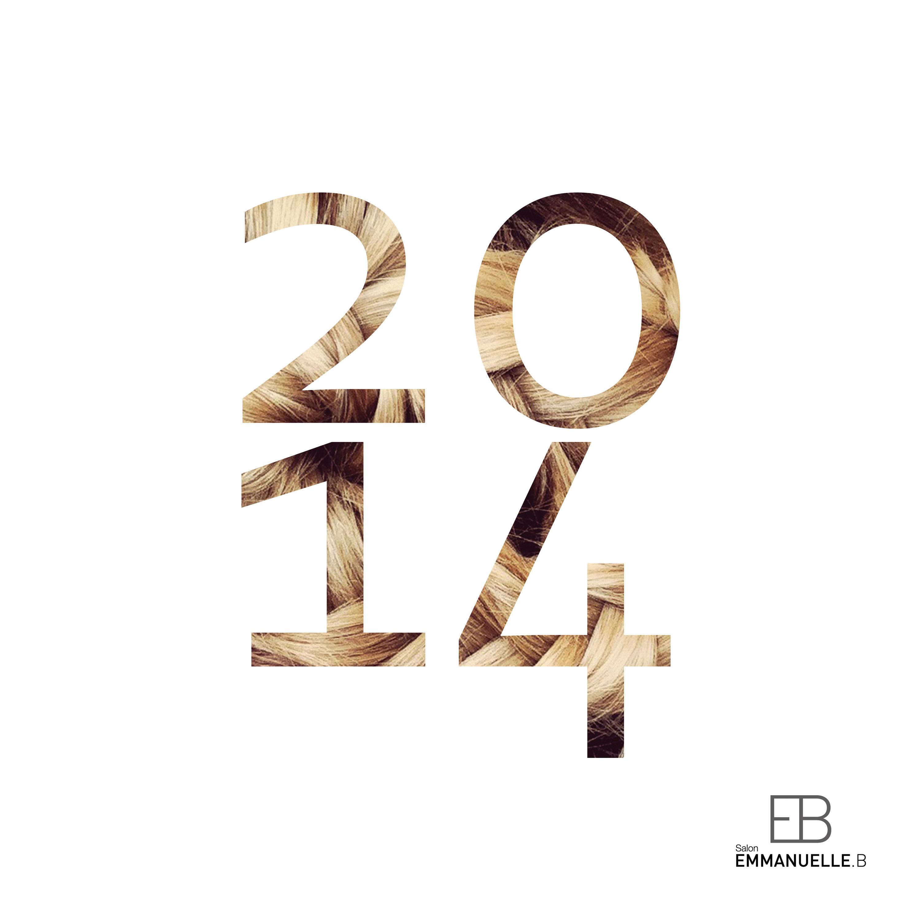 EB-VOEUX-2014